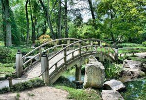 3 Best Landscape Design Tips for Summer