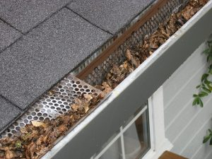 What You Need To Know About Clogged or Broken Gutters