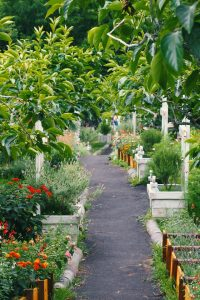 Ways to Garden With a Purpose